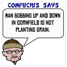 Bobbing in the cornfield Poster
