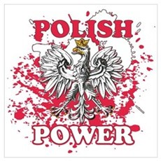 Polish power Poster