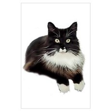 B&W Maine Coon Poster
