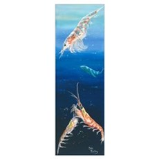 Krill at Play Canvas Art