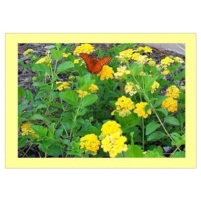 Butterfly Bush with Butterfly Poster