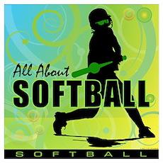 2011 Softball 108 Poster