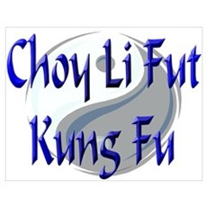 Choy Li Fut Poster