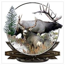 Big game elk and deer Poster