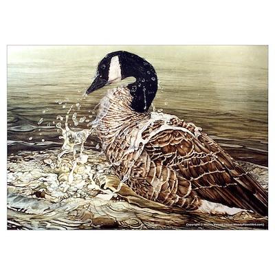 "Canada Goose (19 x 13"") Poster"