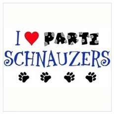 I Love Parti Schnauzers 1.0 Canvas Art