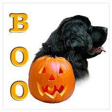 Halloween Black Newfoundland Boo Poster