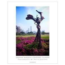 Daphne Garden, Chicago Illinois, Chicago Photo Poster