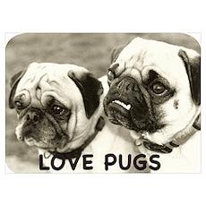 Love Pugs Poster