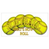 Softball Wrapped Canvas Art