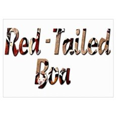Red Tailed Boa Letters Poster