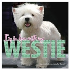 West Highland White Terrier Poster