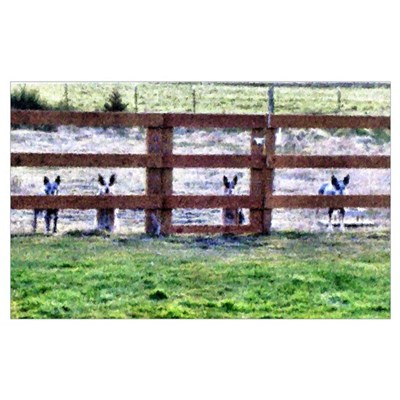 - Gang by fence line Poster