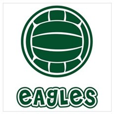 Eagles Green Volleyball Framed Print