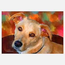 Labrador Retriever-Yellow