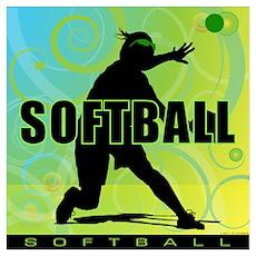 2011 Softball 15 Poster