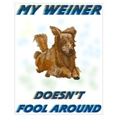 Weiner Dog Agility Poster
