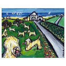Soft coated wheaten terrier v Poster
