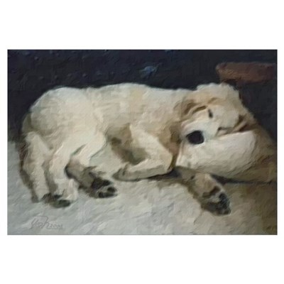 Great Pyrenees Sweet Dreams Canvas Art