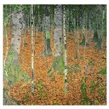 Birch wood Wrapped Canvas Art