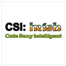 CSI: Irish Poster