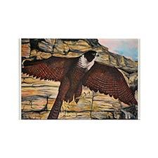 Raptors Rectangle Magnet (10 pack)