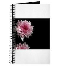 Unique Chrysanthemum Journal