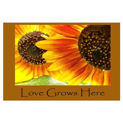 Love Grows Here Sunflowers Canvas Art