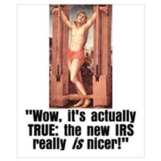 Cuddly New IRS Poster