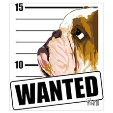 Bulldog Wanted Canvas Art