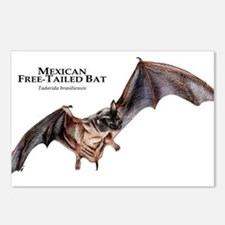 Mexican Free-Tailed Bat Postcards (Package of 8)