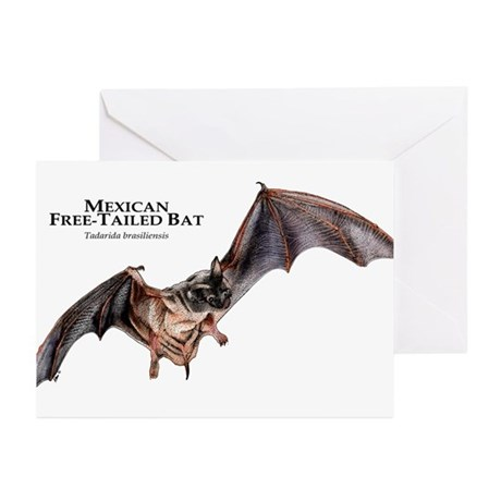 Mexican Free-Tailed Bat Greeting Cards (Pk of 10)