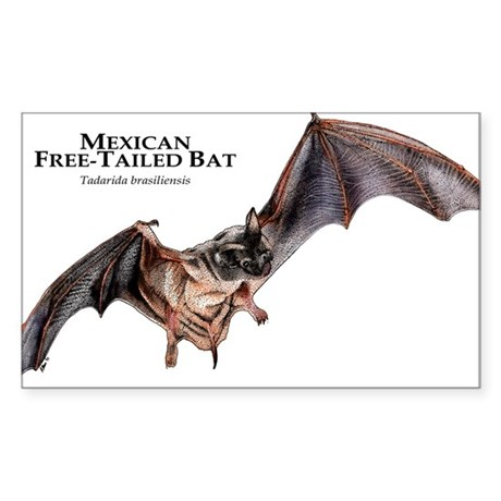 Mexican Free-Tailed Bat Sticker (Rectangle)
