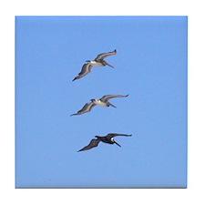 3 Pelicans Tile Coaster
