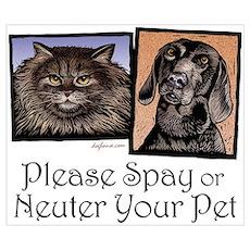 Spay/Neuter Pet Poster