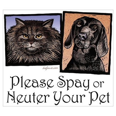 Spay/Neuter Pet Canvas Art