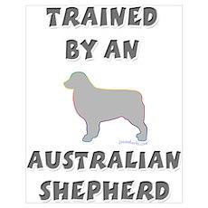 Aussie Shepherd Slvr Poster