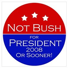 Not Bush Poster