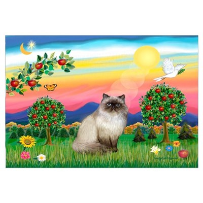 Bright Country / Himalayan Cat Framed Print