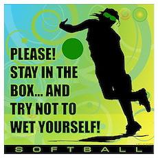 2011 Softball 75 Poster