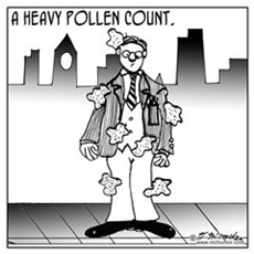 A Heavy Pollen Count Poster