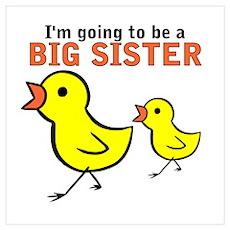 Chicks Big Secret Big Sister Poster
