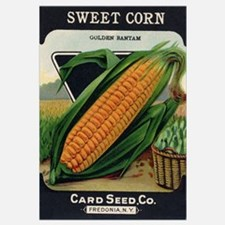 Yellow Corn antique seed pack