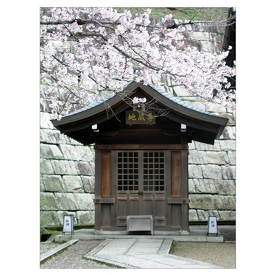 Cherry Blossoms and Shrine in Framed Print