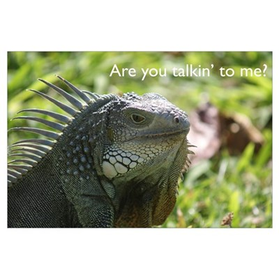 Iguana: You talkin' to me? Poster