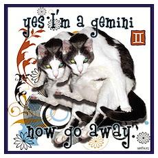 Cat Gemini Poster