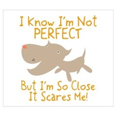 I Know I'm Not Perfect Poster