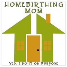 Homebirthing Mom Poster