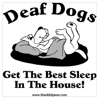 Best Sleep Poster
