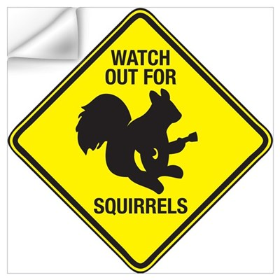 Watch Out For Squirrels Wall Decal